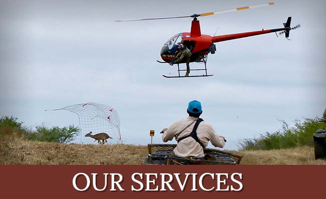 Spring Creek Outdoors, LLC Services