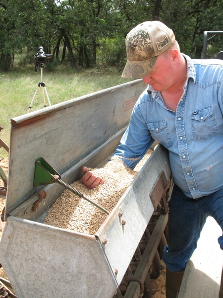 Food Plot Experiment: San Saba County